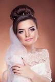 Beautiful bride in studio on brown background Stock Images