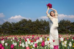 Beautiful bride in tulips field Stock Images