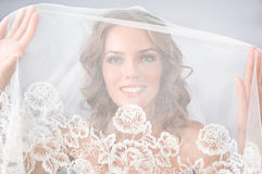 Beautiful bride under veil Royalty Free Stock Photo