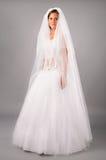 Beautiful bride under veil dress in studio Royalty Free Stock Images
