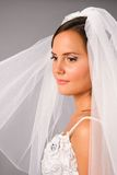 Beautiful bride under veil in studio Royalty Free Stock Image