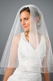 Beautiful bride under veil in studio Royalty Free Stock Photography