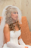 Beautiful bride in veil Royalty Free Stock Photos