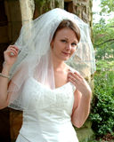 Beautiful Bride with Veil Stock Photo