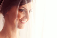 Beautiful bride with veil in her room Royalty Free Stock Photography