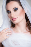 Beautiful bride with veil over her face. Beautiful bride portrait with veil over her face, wearing professional make-up Stock Photo