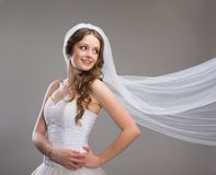 Beautiful Bride with veil Royalty Free Stock Photo