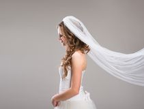 Beautiful Bride with veil Stock Image