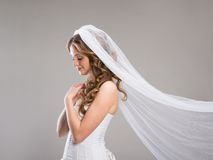 Beautiful Bride with veil. Portrait of beautiful bride with veil isolated over gray background Royalty Free Stock Photos