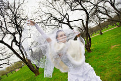 Beautiful bride with veil in wedding walk Stock Image