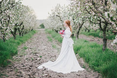 Beautiful bride in a vintage wedding dress posing in a blooming apple garden Royalty Free Stock Photography