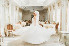 Beautiful bride wearing fashion wedding dress with feathers with luxury delight make-up and hairstyle, studio indoor. Photo shoot royalty free stock images