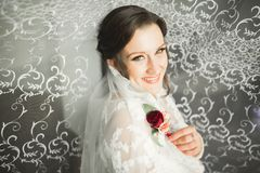 Beautiful bride wearing fashion wedding dress with feathers with luxury delight make-up and hairstyle, studio indoor. Photo shoot Royalty Free Stock Photos