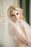 Beautiful bride is wearing lingerie and veil on wedding day Royalty Free Stock Photo