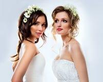Beautiful bride wearing Stock Images