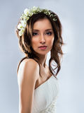 Beautiful bride wearing Stock Photography