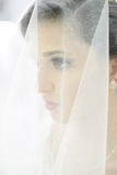 Beautiful bride on wedding day Stock Images