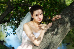 Beautiful bride in wedding dress Royalty Free Stock Photos