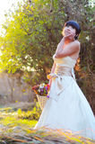 Beautiful bride in wedding dress Stock Images