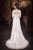 Beautiful bride in wedding dress. Back pose Royalty Free Stock Image