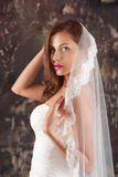 Beautiful bride in a wedding dress with bare shoulders and veil Stock Photo