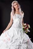 Beautiful bride in a wedding dress Stock Photos