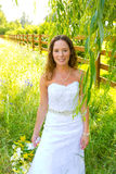 Beautiful Bride in Wedding Dress Royalty Free Stock Photography