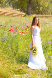 Beautiful Bride in Wedding Dress Royalty Free Stock Photo