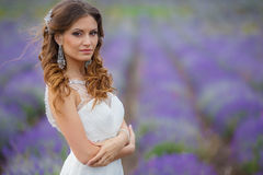 Beautiful bride in wedding dress in lavender field Royalty Free Stock Image