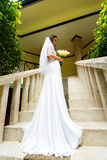 Beautiful bride in wedding dress with long train standing on the Royalty Free Stock Image