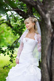 Beautiful bride in wedding dress near tree in park. Beautiful bride in a wedding dress stands near the tree in the park Royalty Free Stock Photo