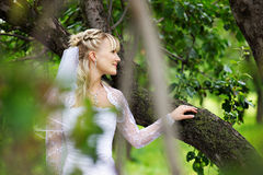 Beautiful bride in wedding dress in park Royalty Free Stock Images