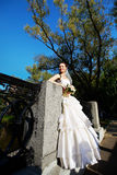 Beautiful bride in a wedding dress in park Royalty Free Stock Image