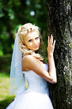 Beautiful bride in wedding dress stands near tree Royalty Free Stock Image