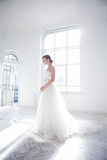 Beautiful bride in wedding dress, white background Royalty Free Stock Photography