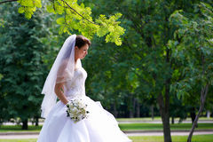 Beautiful bride on wedding walk Royalty Free Stock Photos