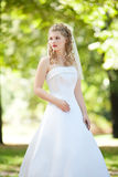 Beautiful bride in white dress. In a park Stock Photography