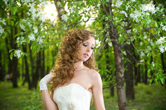 Beautiful bride in a white dress in blooming gardens in the spring Stock Photos