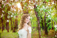 Beautiful bride in a white dress in blooming gardens in the spring Stock Image