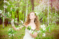 Beautiful bride in a white dress in blooming gardens in the spring Royalty Free Stock Image