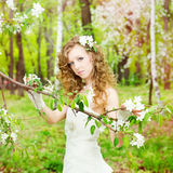 Beautiful bride in a white dress in blooming gardens Royalty Free Stock Photos
