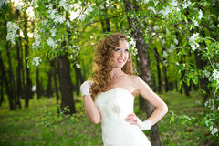 Beautiful bride in a white dress in blooming gardens in the spring Royalty Free Stock Photos