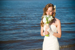 Beautiful bride in a white dress on coast of river Stock Photography