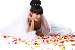 Beautiful bride in a white dress with rose petals. Studio shot Stock Image