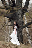 Beautiful bride in white dress standing in front of grey tree Stock Image