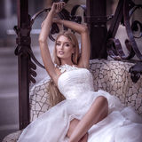 Beautiful bride in white dress. Royalty Free Stock Photo