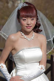 Beautiful bride in white gown and veil Stock Photography
