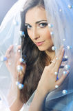 Beautiful bride in the white veil Royalty Free Stock Photography