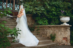 Beautiful bride in a white Royalty Free Stock Image