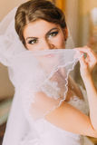 Beautiful bride in white wedding dress posing with veil indoors. Female portrait in bridal gown for marriage Stock Images
